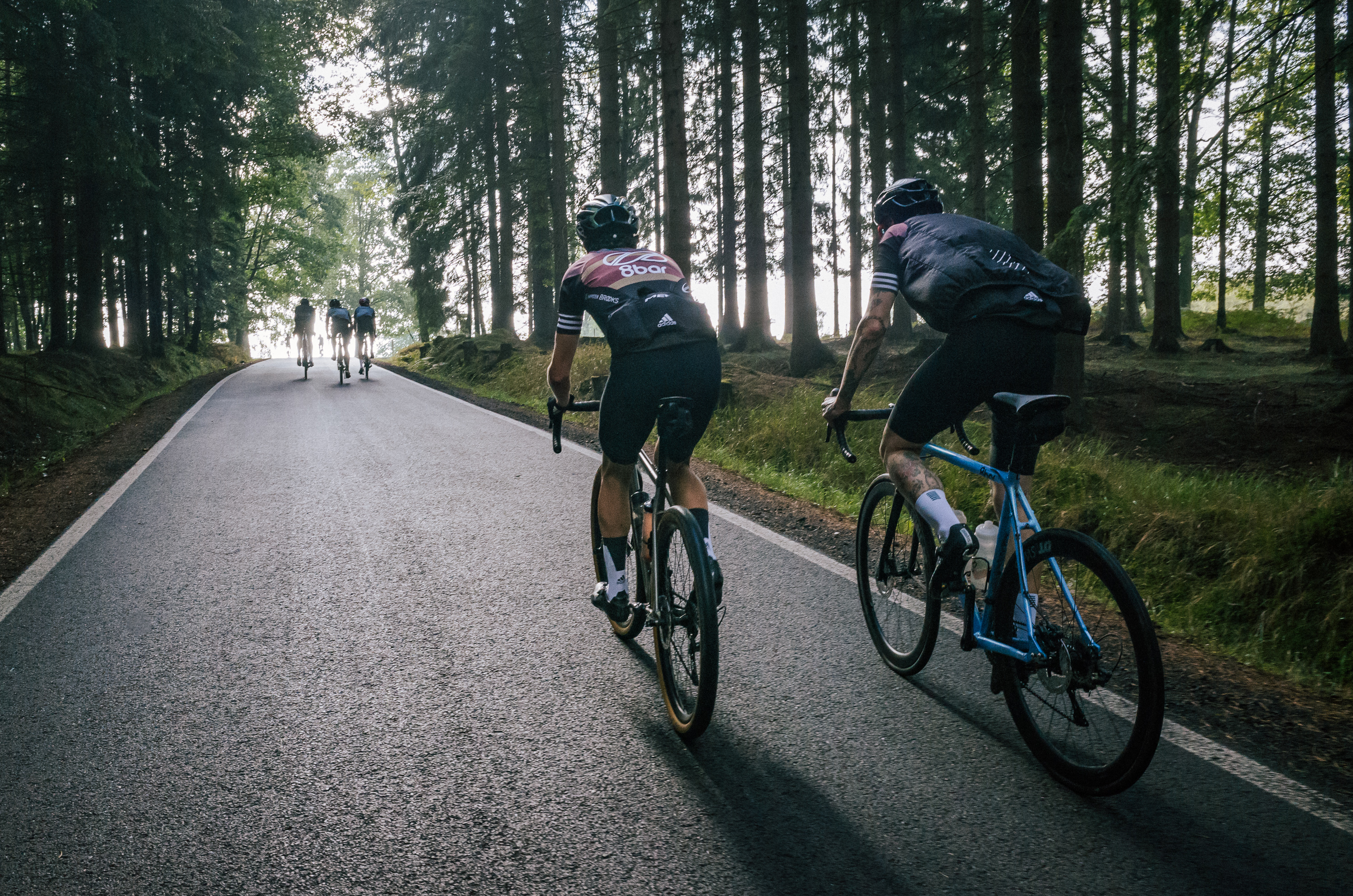 Cyclists on a road that goes through a forest. On the foreground are two cyclists riding one beside the other.
