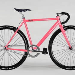 TFLSBERG_v2_flamingo_cross